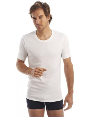 Lot of 2 cotton round neck T-shirt Armor Lux