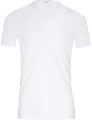 Lot de 2 Tee-shirts col V coton Blanc